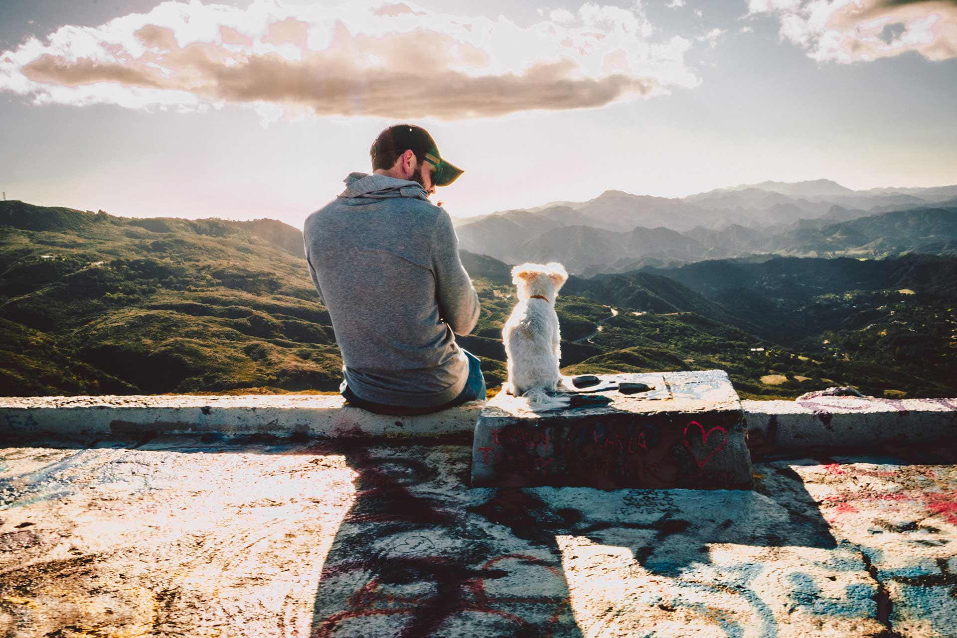 man sitting on a ledge looking down at his white dog